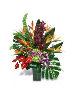 Tropical Extravagance